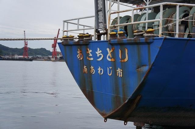 DSC09337.JPG
